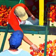 Georgia Peaches Art Print