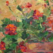 Geraniums II Art Print