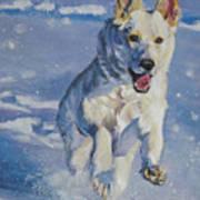 German Shepherd White In Snow Art Print by Lee Ann Shepard