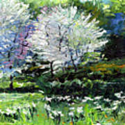 Germany Baden-baden Spring 2 Art Print