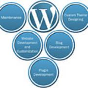 Get Result Oriented Word Press Development Services Art Print