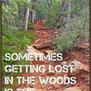 Getting Lost In The Woods Art Print