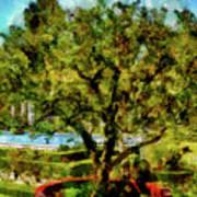 Getty Villa Landscape Art Print