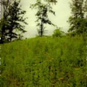 Gettysburg Landscape Art Print