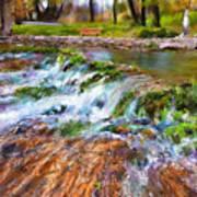 Giant Springs 2 Art Print