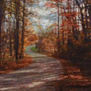 Gibson Ridge Road Art Print