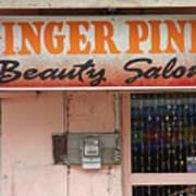 Ginger Pink Art Print