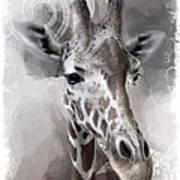 Giraffe No 01 Art Print