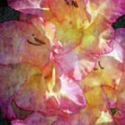 Glad Chiffon 3004 Idp_2 Art Print