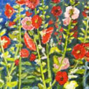 Gladiolus, 11x14, Oil, '07 Art Print
