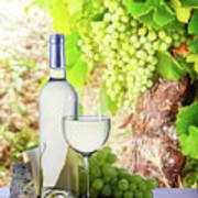 White Wine In Vineyard Art Print