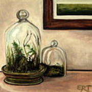 Glass Terrariums Art Print
