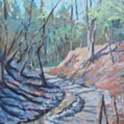 Glen Stewart Ravine Art Print