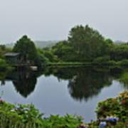 Glenwhan Gardens Art Print