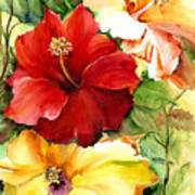 Glorious Hibiscus Art Print