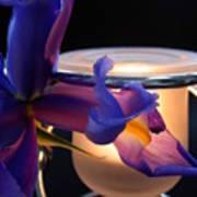 Glowing Iris Art Print