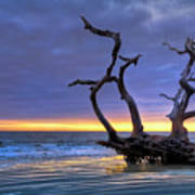 Glowing Sands At Driftwood Beach Art Print