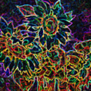 Glowing Sunflowers Art Print