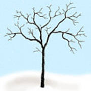 Gnarled In Winter Art Print