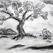 Gnarly Oak Art Print