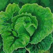 God's Kitchen Series No 5 Lettuce Art Print
