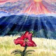 God's Ray's Shining On A Red Lily Flower In The Spring Art Print