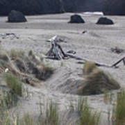 Gold Beach Oregon Beach Grass 18 Art Print