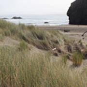 Gold Beach Oregon Beach Grass 24 Art Print