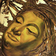Virtues Of The Buddha Art Print