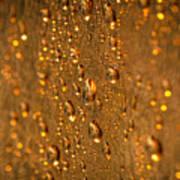 Gold Drops Art Print