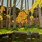 Gold On The River Meadow Park Lyons Co Art Print
