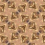 Golden Arrowheads Art Print