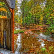 Golden Autumn Days Art Print