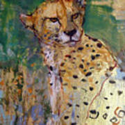Golden Cheetah Art Print