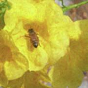 Golden Elder And Bee Art Print