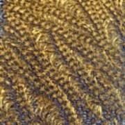 Golden Grains - Hoarfrost On A Solar Panel Art Print