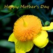 Golden Guinea Happy Mothers Day Art Print