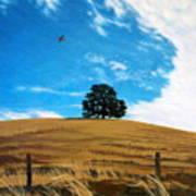Golden Hills Summer Sky Art Print