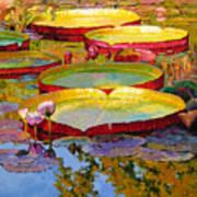 Golden Light on Pond Art Print