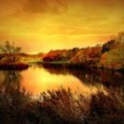 Golden Pond Art Print