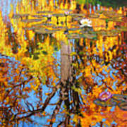 Golden Reflections On Lily Pond Art Print