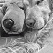 Golden Retriever Dog And Friend Art Print