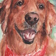 Golden Retriever Dog In Watercolori Art Print