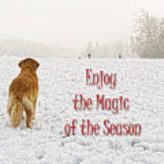 Golden Retriever Dog Magic Of The Season Art Print