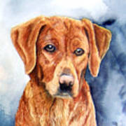 Golden Retriever Sara Art Print