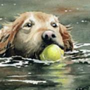 Golden Retriever Swimming Art Print