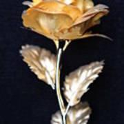 Golden Rose 1 Art Print