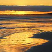 Golden Shore Art Print