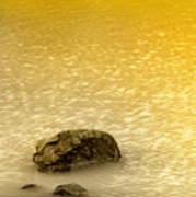 Golden Silence Art Print