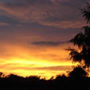 Golden Sunset 2 Art Print